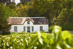 Weingut bei Stellenbosch