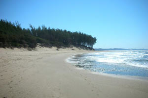 Strand an der Elephant Coast